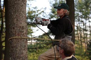 Treehouse Masters - Vicky - toekomt.nl