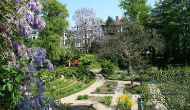 Buitenhof Hortus Botanicus - toekomt.nl