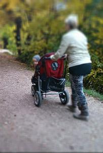 uitjes met kleinkinderen toekomt.nl
